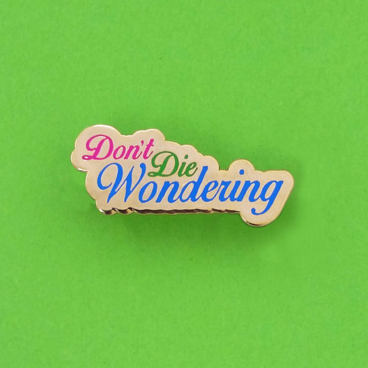 Don't Die Wondering Pin on green background